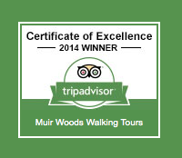 Trip Advisor Muir Woods Tour at Muir Woods National Monument